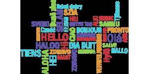 langues adultes 2 2 1024x702